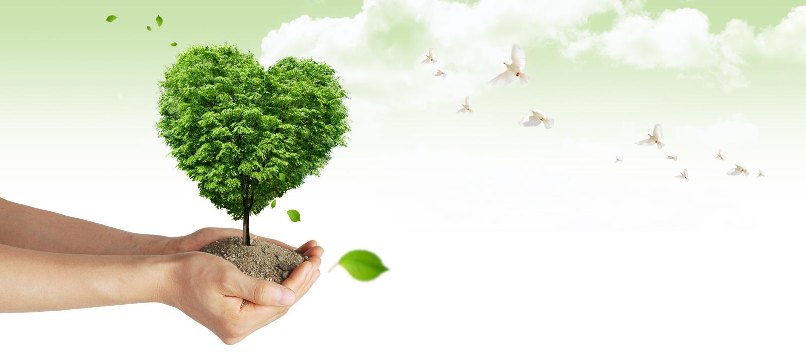 Doğal Yaşamın Destekçisiyiz || Hasan Kulu